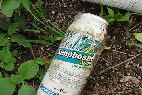 "Glyposat-Behälter, hier Marke ""Sunphosate"", in einem Feld (Foto: International Institute of Tropical Agriculture / flickr, Lizenz: creativecommons.org/licenses/by-nc/2.0)"
